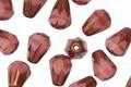 Czech Glass Bronzed Desert Rose Faceted Drop 8x6mm