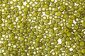 TOHO Semi-Glazed Olive Round 11/0 Seed Bead