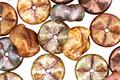 Czech Glass Desert Palm Waved Floral Disc 9mm