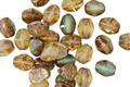 Czech Glass Luster Picasso Pistachio Mix Pinch Bead 5x4mm