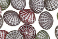 Czech Glass Vintage Mix Bicone 8x10mm