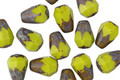 Czech Glass Chartreuse Picasso Faceted Drop 8x6mm