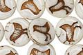 Czech Glass Coconut Coin w/Bird 11mm