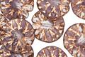 Czech Glass Lilac w/ Copper Dahlia Coin 14mm