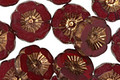 Czech Glass Bronzed Garnet Hibiscus Coin 12mm