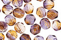 Czech Fire Polished Glass Dual Coated Cantaloupe/Grape Round 6mm