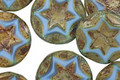 Czech Glass Clay River Starflower Coin w/ Scalloped Edge 15mm