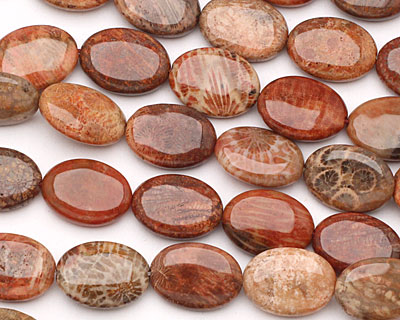 Fossil Coral (red) Flat Oval 18x13mm