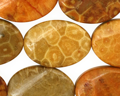 Fossil Coral (yellow) Twisted Flat Oval 25x18mm