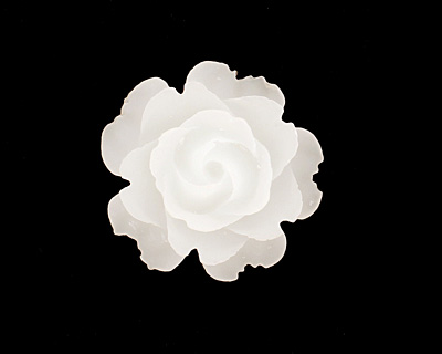 Transparent Matte White Lucite Rose Cabochon 23mm