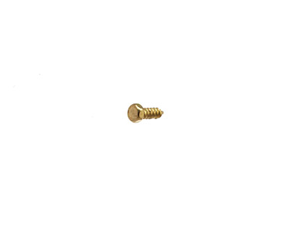 Brass Lag Screw #0x3/16