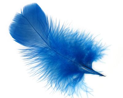 Royal Blue Turkey Flat Feather 100-152mm