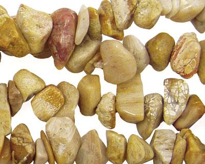 Fossil Jasper Chips