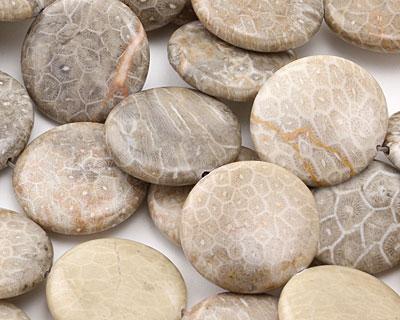 Fossil Jasper Puff Coin 30mm