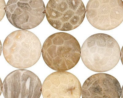 Gray Fossil Coral Puff Coin 15mm