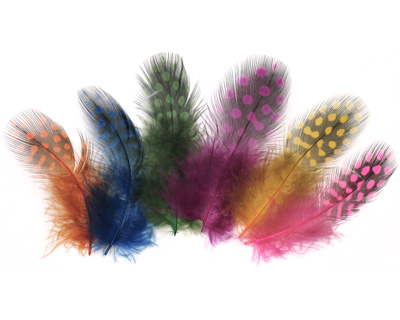 Bright Assortment Guinea Hen Feather 76-101mm