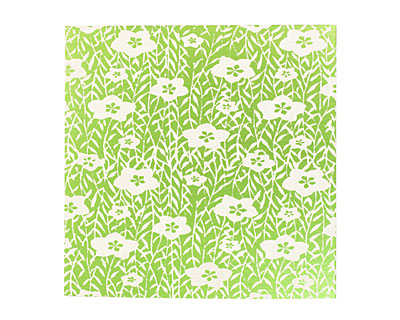 Lillypilly Lime Green Flower Garden Anodized Aluminum 3