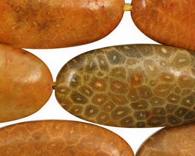 Fossil Coral (yellow) Flat Oval 40x20mm