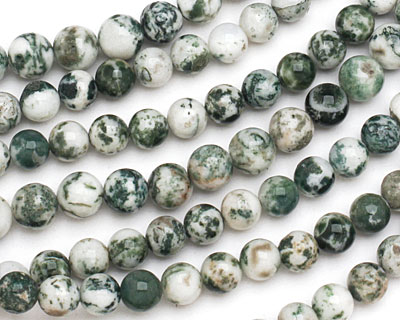 Tree Agate Round 8mm