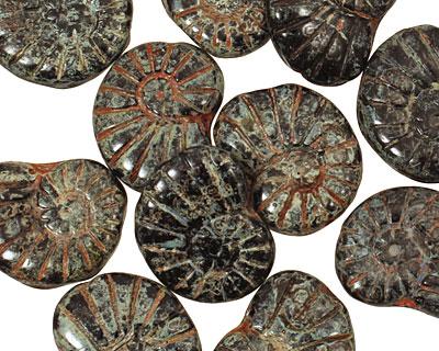 Czech Glass Jet Picasso Ammonite 20x13mm