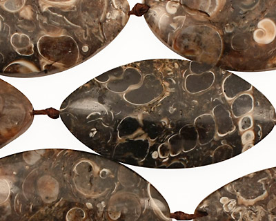 Turritella Agate Horse Eye 30-50x14-24mm