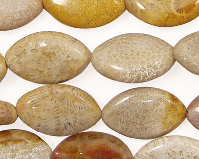 Fossil Jasper Horse Eye 19x12mm
