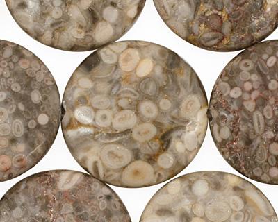 Ocean Fossil Puff Coin 25mm
