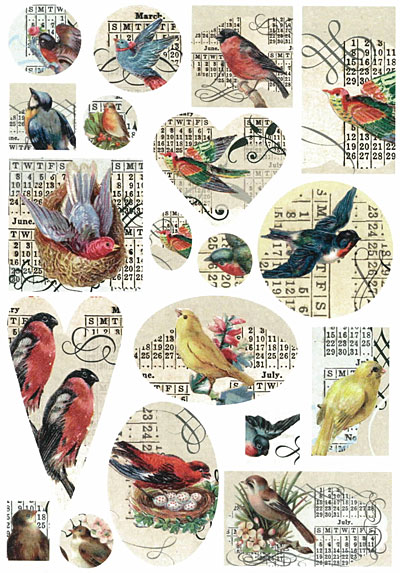 Nunn Design Birds Transfer Sheet