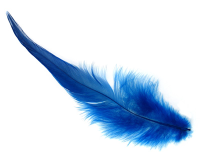 Royal Blue Neck Hackle Feather 100-152mm