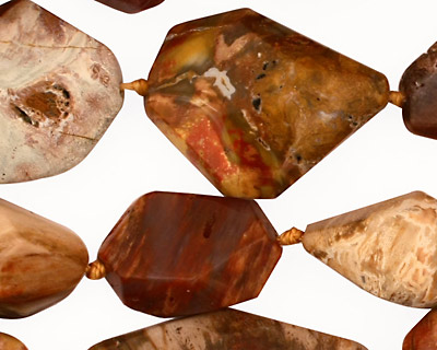 Madagascar Petrified Wood Faceted Nugget 15-28x10-18mm