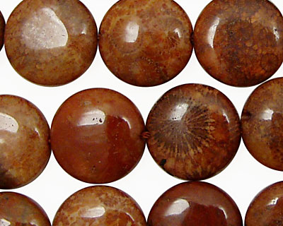 Fossil Jasper (red) Puff Coin 16mm