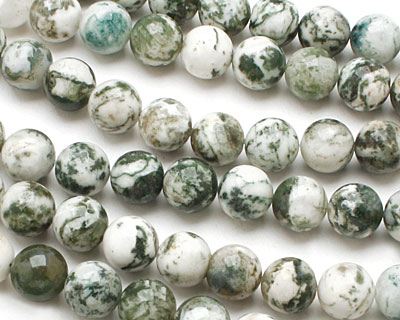 Tree Agate Round 10mm