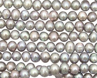 Silver Peacock Potato 4.5-5mm
