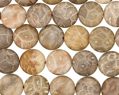 Gray Fossil Jasper Puff Coin 10mm
