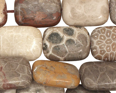 Gray Fossil Coral Thin Pillow 20x15mm