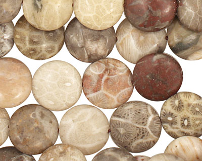 Gray Fossil Coral Puff Coin 12mm