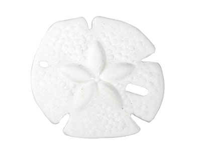 Opaque White Recycled Glass Sand Dollar 39mm