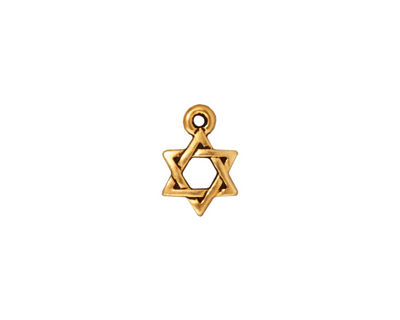 TierraCast Antique Gold (plated) Star of David Charm 8x12mm