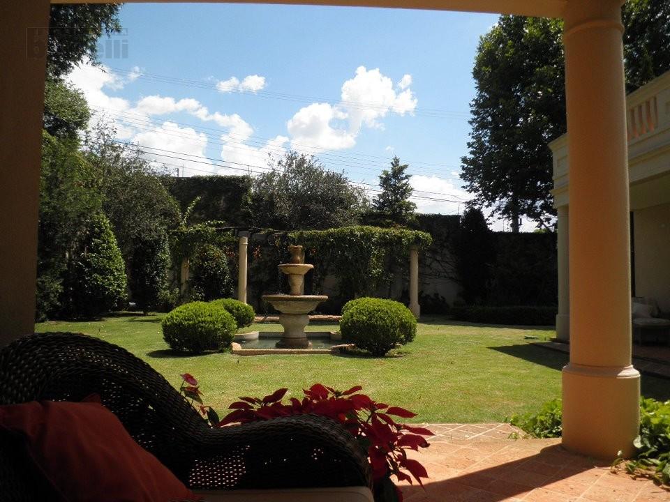 Jardim ao lado do living room