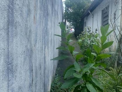 Ver mais detalhes de Apartamento com 0 Dormitórios  em Jardim Monte Kemel - Taboão da Serra/SP