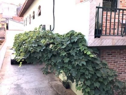 Ver mais detalhes de Casa com 3 Dormitórios  em Jardim Paraíso - São Paulo/SP