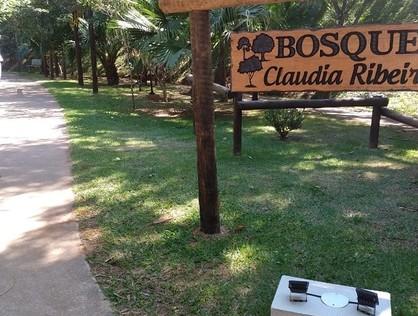 Ver mais detalhes de Apartamento com 3 Dormitórios  em Jaguaribe - Osasco/SP