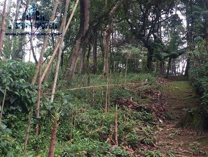 Ver mais detalhes de Terreno com 0 Dormitórios  em Chácara Vale do Rio Cotia - Carapicuíba/SP
