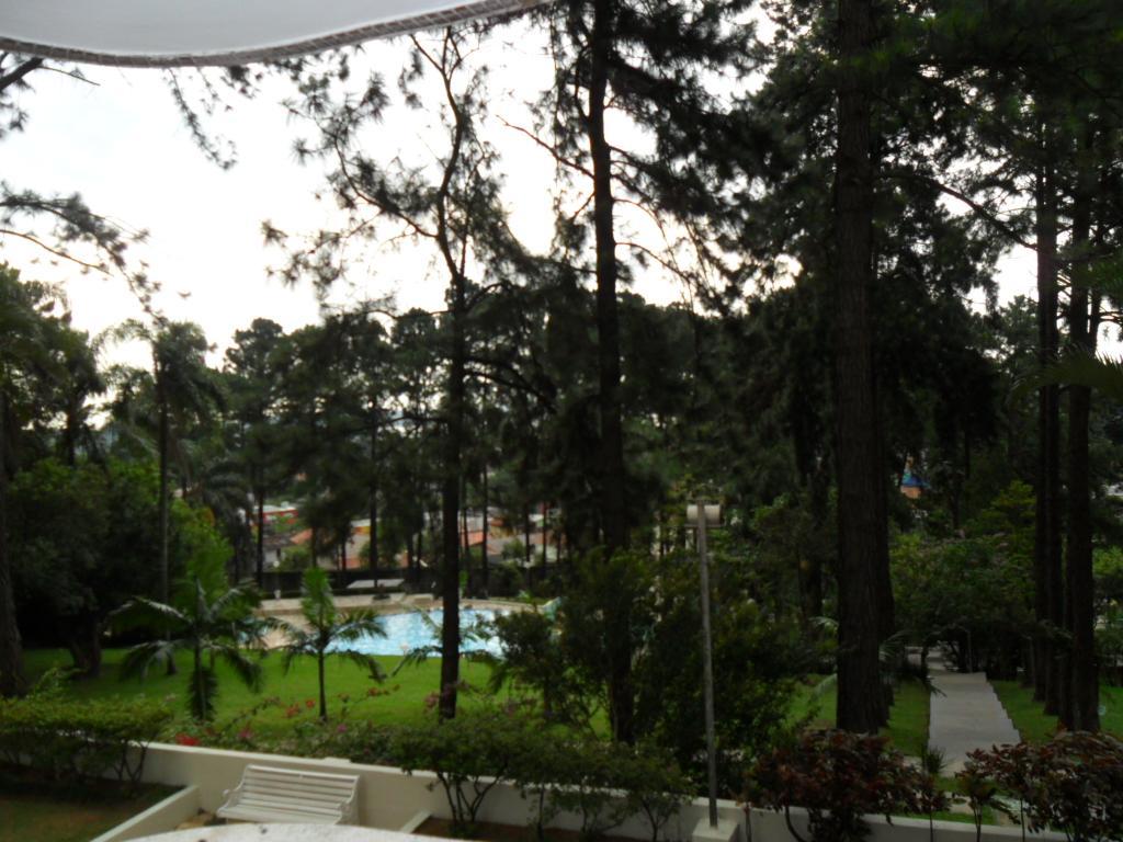 Jardim