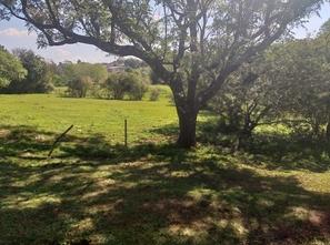 Ver mais detalhes de Terreno com 0 Dormitórios  em São Genaro - Cruz Alta/RS