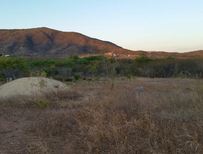 Ver mais detalhes de Rural com 0 Dormitórios  em Malhada da Areia - Currais Novos/RN