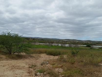 Ver mais detalhes de Rural com 0 Dormitórios  em Barra da Areia - Currais Novos/RN