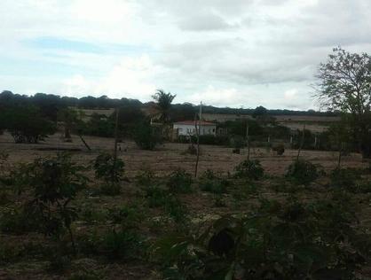 Ver mais detalhes de Rural com 2 Dormitórios  em Zona rural - São Vicente/RN