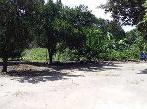 Ver mais detalhes de Rural com 3 Dormitórios  em Vale do Verde - Ipiranga do Norte/MT
