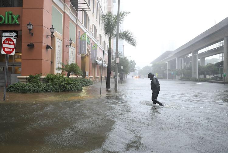 Pedestrian in downtown Miami during Irma, 9/10/2017